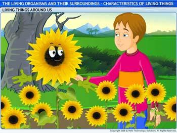 Animated video Lecture for Characteristics of Living Things