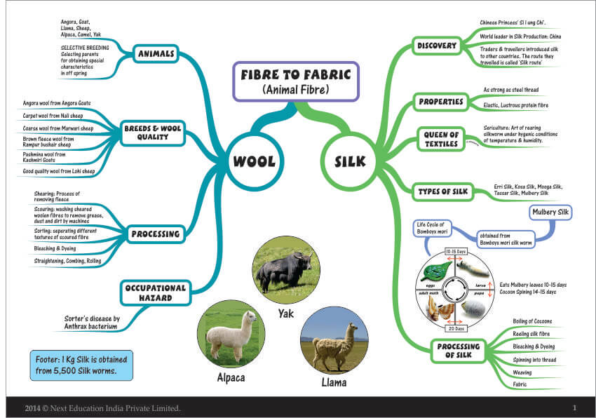 Mindmaps_Chemistry_7th_Class_Fibre to Fabric