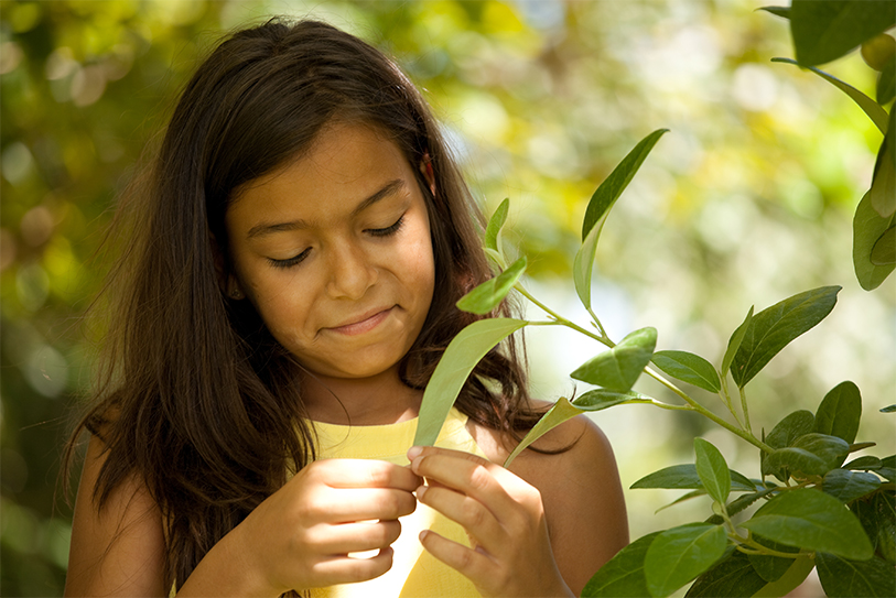 Environmental-education.jpg