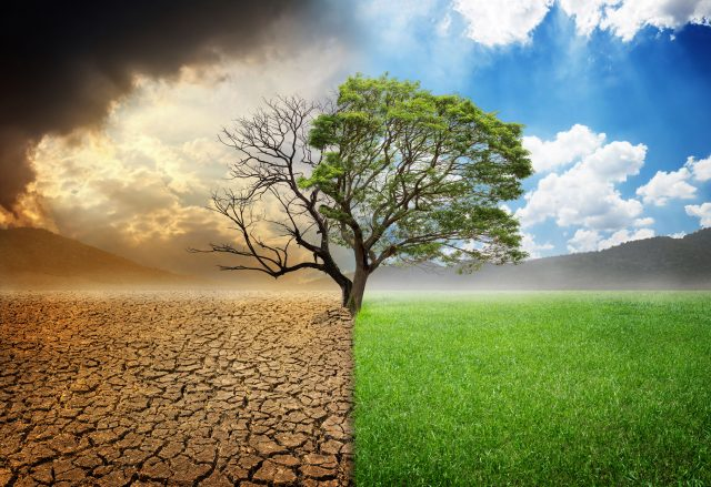 Government releases publication on actions undertaken to tackle climate change