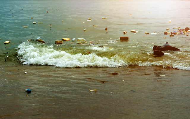 India, Norway launch 'India-Norway Marine Pollution Initiative' to combat Marine pollution