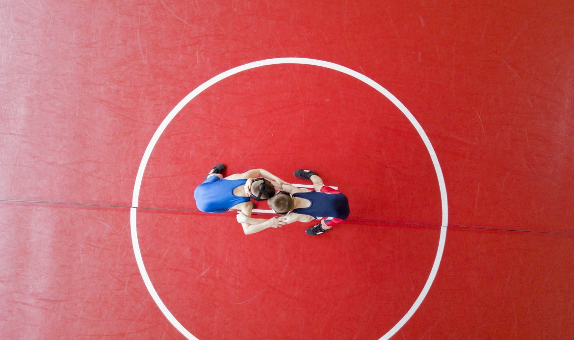 India wins 5 medals at World Wrestling Championship