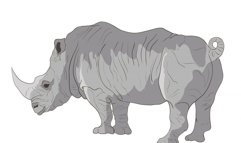 Last Sumatran Rhino extinct in Malaysia