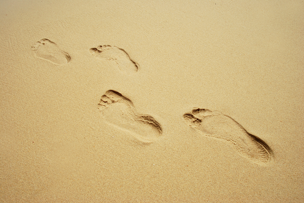 Largest collection of ancient human footprints discovered in Africa
